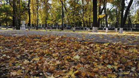 Voronezh enters top-10 of cheap cities for autumn vacations