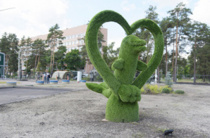 """Top-of-the-line"". Pre-fabricated hospital with topiary dolphin opens in Voronezh"
