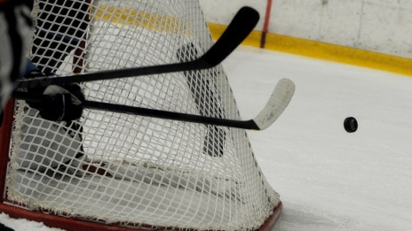 Voronezh Region to come up with hockey development model